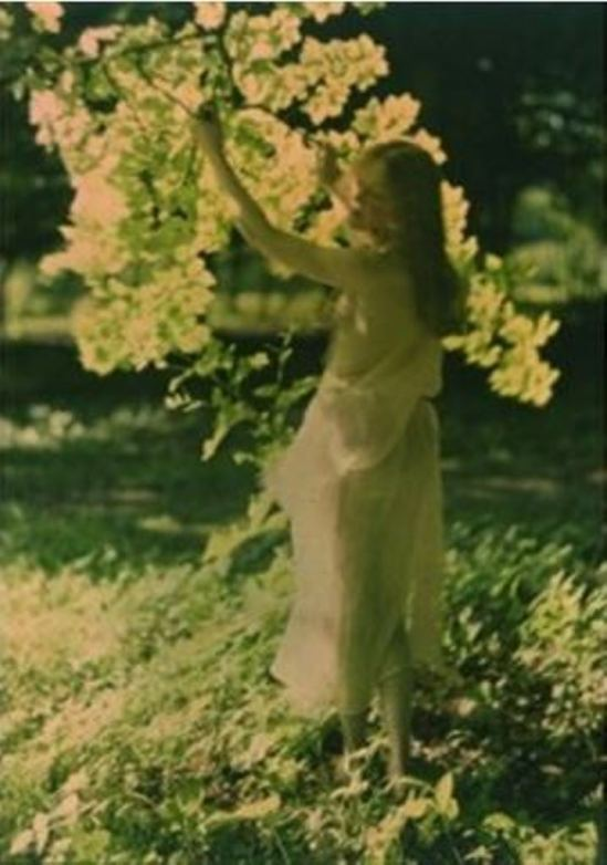 Louis J. Steele. The sunlit branch 1908. Autochrome. Via artnet