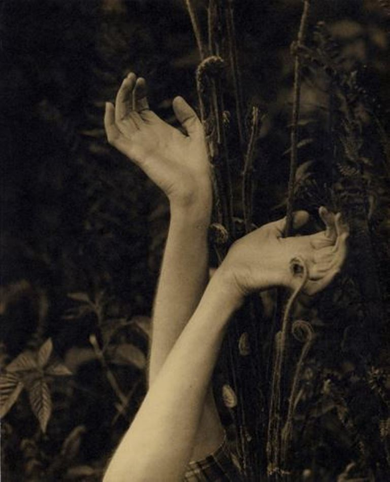 Edward Steichen. Dana's Hands 1923. Via eastman museum