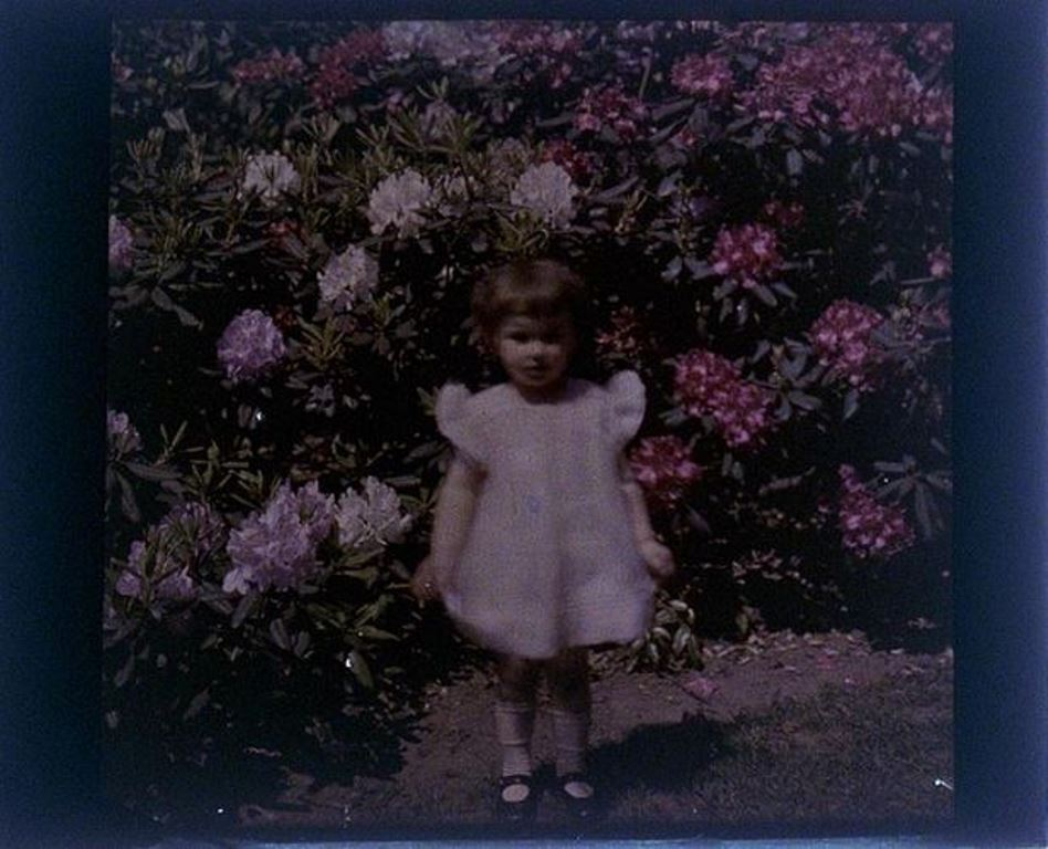 charles-c-zoller-rhododendron-with-girl-1931-autochrome-via-eastmanuseum