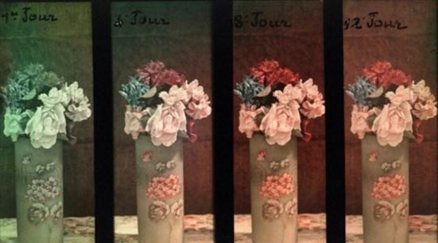 Charles Adrien. Essai de lumière sur un bouquet de fleurs. Autochrome ®SFP