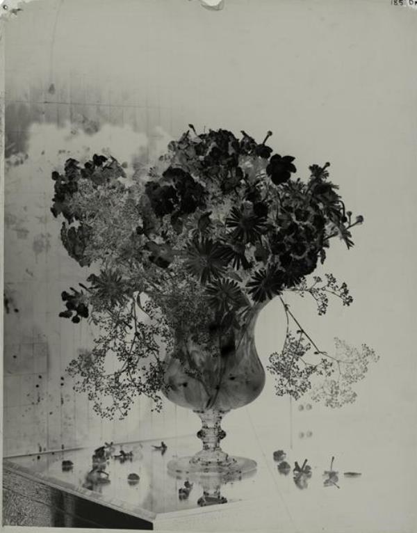 Dora Maar. Etude florale vers 1930 ®RMN